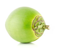 Fruta verde do coco Imagem de Stock Royalty Free