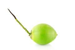 Fruta verde do coco Fotos de Stock Royalty Free