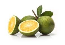 Fruta verde dulce de las naranjas imágenes de archivo libres de regalías
