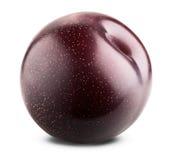 Fruta vermelha da ameixa Fotos de Stock Royalty Free