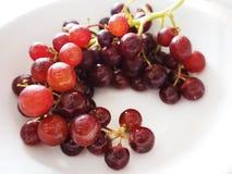Fruta violeta de la uva Imagen de archivo libre de regalías