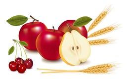 Fruta y algunos oídos del trigo. Imagenes de archivo
