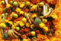 Fruta y flores II Foto de archivo libre de regalías