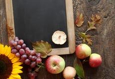 Fruta y girasol frescos del otoño Imagenes de archivo