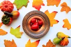 Fruta y hojas de la acción de gracias Imagenes de archivo