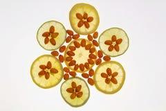 Fruta y limón anaranjados medicinales Imagen de archivo libre de regalías