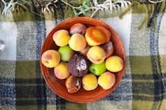 Fruta y molletes foto de archivo libre de regalías