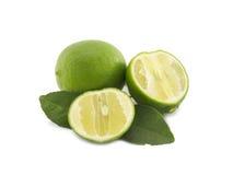 Fruta y rebanada frescas de la cal en el fondo blanco Imagen de archivo libre de regalías