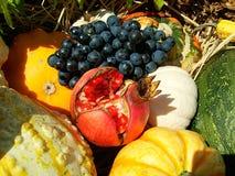 Fruta y verdura - ingredientes Foto de archivo libre de regalías