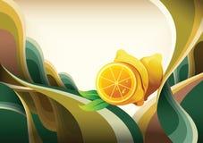 Frutas ilustração stock