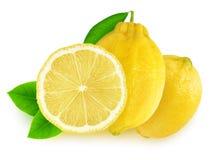 Frutas aisladas del limón del corte imagen de archivo libre de regalías