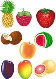 Frutas ajustadas ilustração royalty free