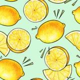 Frutas amarillas hermosas del limón aisladas en fondo verde Dibujo del garabato del limón Modelo inconsútil Foto de archivo