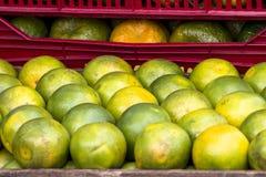 Frutas anaranjadas Imagenes de archivo