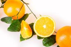 Frutas anaranjadas Imagen de archivo libre de regalías