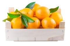 Frutas anaranjadas en una caja de madera Imagen de archivo libre de regalías