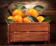 Frutas anaranjadas frescas con las hojas en una caja de madera Imagen de archivo libre de regalías