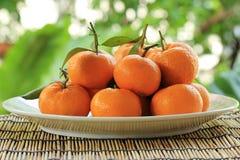 Frutas anaranjadas frescas y maduras con las hojas Imagen de archivo libre de regalías