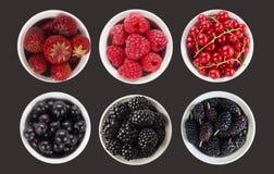 Frutas azules y rojas y bayas aisladas en negro Baya dulce y jugosa con el espacio de la copia para el texto Visión superior Mora Fotografía de archivo libre de regalías