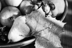 Frutas BW Imagenes de archivo