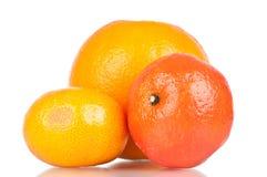 Frutas cítricas Foto de archivo libre de regalías