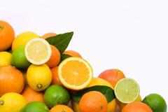Frutas cítricas Foto de archivo