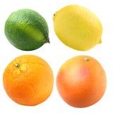 Frutas cítricas Fotografía de archivo libre de regalías