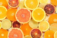 Frutas cítricas brillantes Fotos de archivo