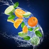 Frutas cítricas frescas con el chapoteo del agua Imagen de archivo