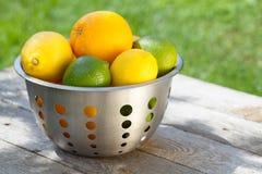 Frutas cítricas maduras frescas en colador foto de archivo