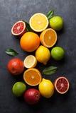 Frutas cítricas maduras frescas Limones, cales y naranjas Imágenes de archivo libres de regalías
