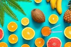 Frutas coloridas con la hoja de palma sobre fondo azul fotos de archivo libres de regalías