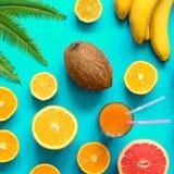 Frutas coloridas con la hoja de palma sobre fondo azul imágenes de archivo libres de regalías