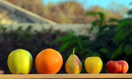 Frutas coloridas en fondo verde del jardín Fotografía de archivo