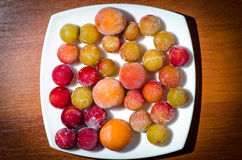 Frutas congeladas fotografía de archivo