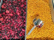 Frutas congeladas en dos compartimientos fotografía de archivo