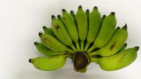 Frutas crudas de Tailandia del plátano Fotografía de archivo