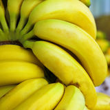 Frutas da banana foto de stock royalty free