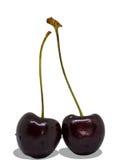 Frutas da cereja com folhas Trajeto de grampeamento Fotografia de Stock