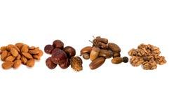 Frutas da coleção Imagem de Stock