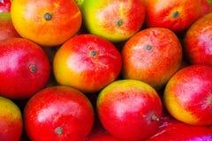 Frutas da manga Imagem de Stock Royalty Free