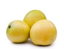 Frutas da manga foto de stock royalty free