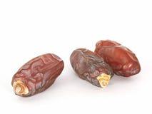 Frutas da tâmara Imagem de Stock