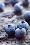 Frutas da uva-do-monte (uva-do-monte do norte de Highbush) fotografia de stock