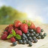 Frutas de baga do verão imagens de stock royalty free