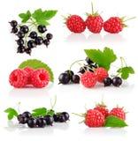 Frutas de baga frescas ajustadas com folhas verdes imagem de stock