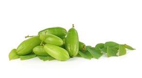 Frutas de Bilimbi de Asia sudoriental imágenes de archivo libres de regalías