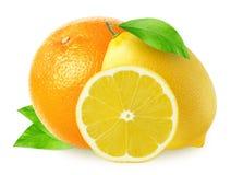 Frutas de Cytrus Naranja entera y limones aislados en blanco Imágenes de archivo libres de regalías
