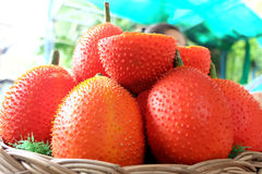 Frutas de Gac Fotos de archivo