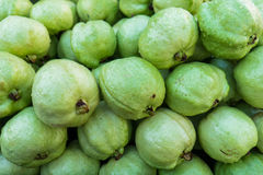 Frutas de guayaba Fotografía de archivo